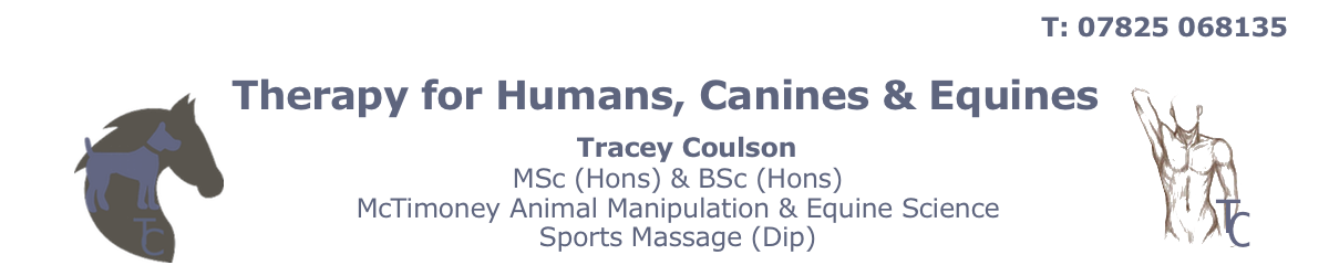 Therapy for Canines & Equines
